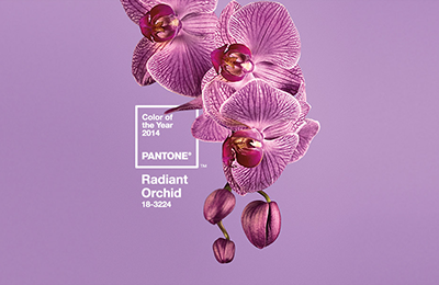 Pantone® Colour of the Year 2014